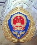 湖南大新消防救援徽2019款消防徽價格80元起