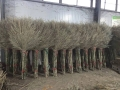 环卫竹扫把批发厂家竹扫帚生产厂家