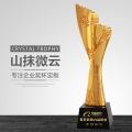 惠州華陽公司獎杯獎牌定制廠家年度質量獎杯突破創新獎
