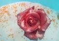 鲜花干花干燥剂硅胶粉玫瑰长期保存制作标本永生花干燥