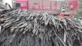 上海回收各類二手廢舊電纜,誠信報價上門回收 求購