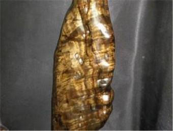 香港珩隆国际拍卖有限公司——雕刻珍品阴沉木木雕龙纹摆件