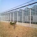 連棟玻璃溫室 花卉智能玻璃溫室 玻璃餐廳 農業溫室