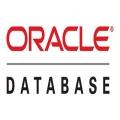 Oracle 數據庫 標準版,一套多少錢