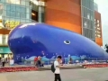 大藍鯨主題策劃鯨魚島百萬海洋球出租出售