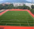 足球場沖砂人工草坪尺寸