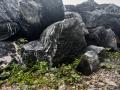 江蘇黑色園林造景黑山石日式枯山水造景小型庭院點綴石