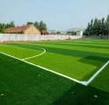 人造草坪足球場地價格定制加工