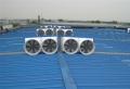 厦门排气扇 厦门工业风扇 厦门排气扇厂家