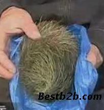老汉树林肝脏交易视频