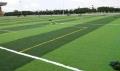 足球場幼兒園操場專用草坪包工包料每米多少錢