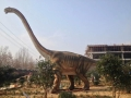 恐龍出租恐龍世界恐龍模型出售精品制作大型航空展出租