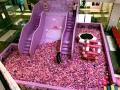 豬豬樂園出租 豬豬樂園租賃 北京豬豬樂園出租租賃