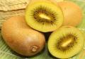 黃心獼猴桃——你每日的能量果