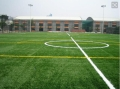 建一个标准足球场要多少钱