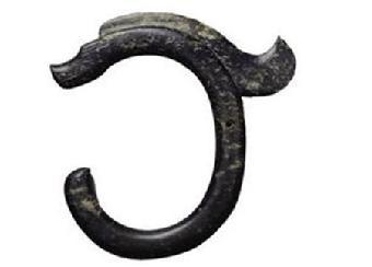 龙和蛇的logo