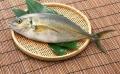 北京池魚王銷售