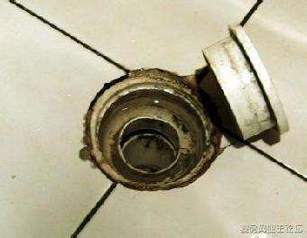 青岛卫生间地漏返臭异味维修安装防臭地漏安马桶防溢器            一