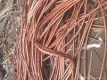 盐城工地电缆收购哪家好