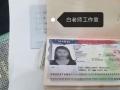 美国签证H1B想去上海面签可是没有预约时间怎么加急