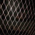 不锈钢丝绳网批发 不锈钢绳网厂家