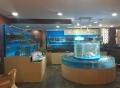 廣州超市魚池-廣州海鮮池設計-海鮮池定做-海鮮魚池
