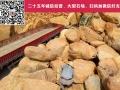 東莞黃蠟石怎么賣、批發黃蠟石、華南黃蠟石批發市場
