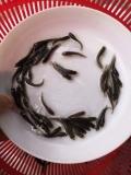 四川广元台湾泥鳅苗,山东威海乌鳢鱼苗批发价格