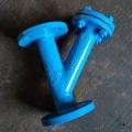 浙江雙慶焊接Y型過濾器SRL