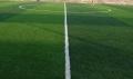 足球場賽爾隆塑料草皮價格行情
