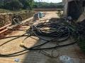 河北东光废电缆回收 河北东光旧废电缆回收
