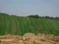 防尘网建筑工地用绿色盖土网工程防沙绿化环保盖土网