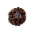 天津陶碳球無土植栽 多肉陶粒球 盆栽盆景輕質陶粒