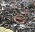 西乡回收各种电子废弃物可信赖公司