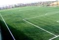 足球場免填充雙色草坪專業制造廠家