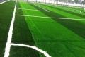足球場學校人造草皮制作廠家