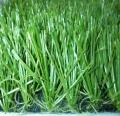 足球場地人造草坪批發經銷商