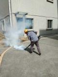 博罗防治白蚁 博罗预防白蚁公司 甲级专业资质认证