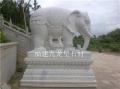大象石雕定做 汉白玉雕刻大象 专业石雕大象厂家