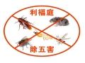上海灭跳蚤公司有用吗 上海专业抓鼠 上海专业杀白蚁