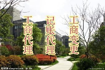 成都锦江营业执照代办记账代办