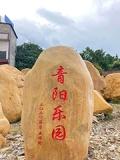 廣東深圳校園畢業季母校紀念石文化石