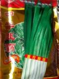 新韭菜種子上市中