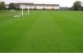 足球場11人制人工草皮的單價