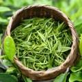 韶關綠茶瓷杯品茶茶壺泡茶的方法跟步驟