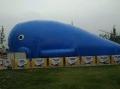 冬季首选鲸鱼岛气模乐园出租专业打造鲸鱼岛报价租赁