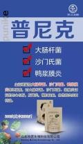 鴨子漿膜炎常見類型??有啥特效藥??