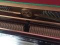 珠江钢琴只需3000元即可租回家
