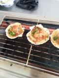 烤魚加盟涉縣小吃技術培訓學校