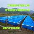 小龍蝦帆布水池 低成本養殖水池 廠家直銷定制